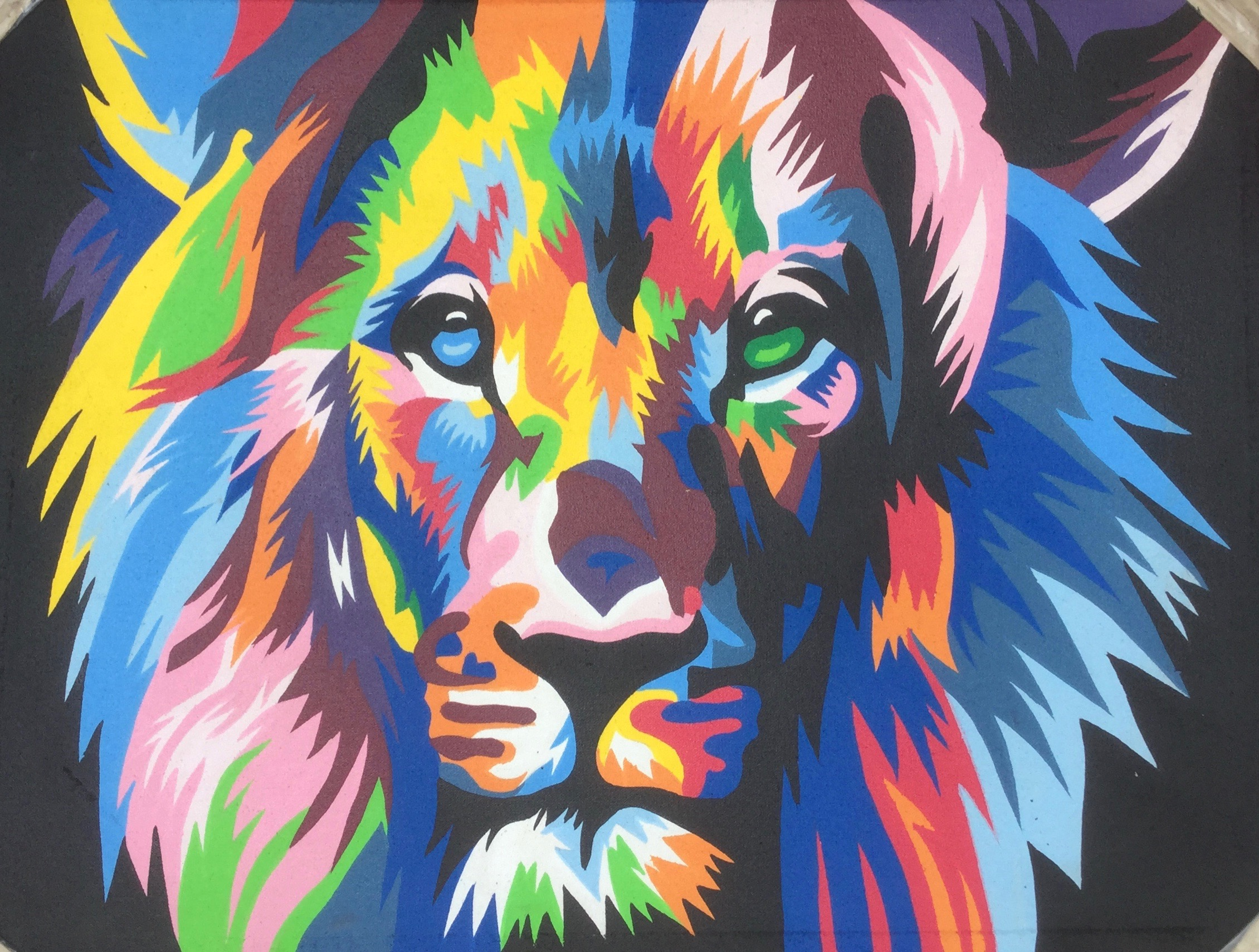colorful animal painting 7090cap001 公式 goes windy dream